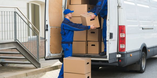 Savvy Storage Man and Van Service Milton Keynes